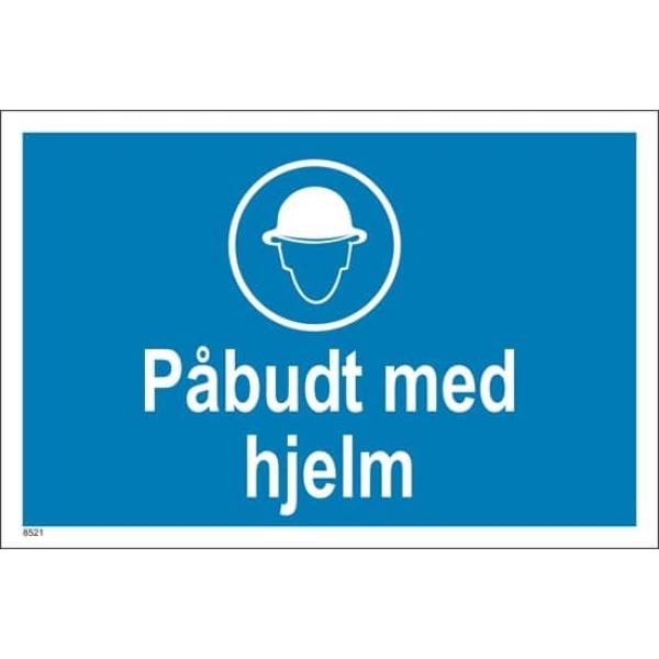 PÅBUDT MED HJELM, 20X30 1