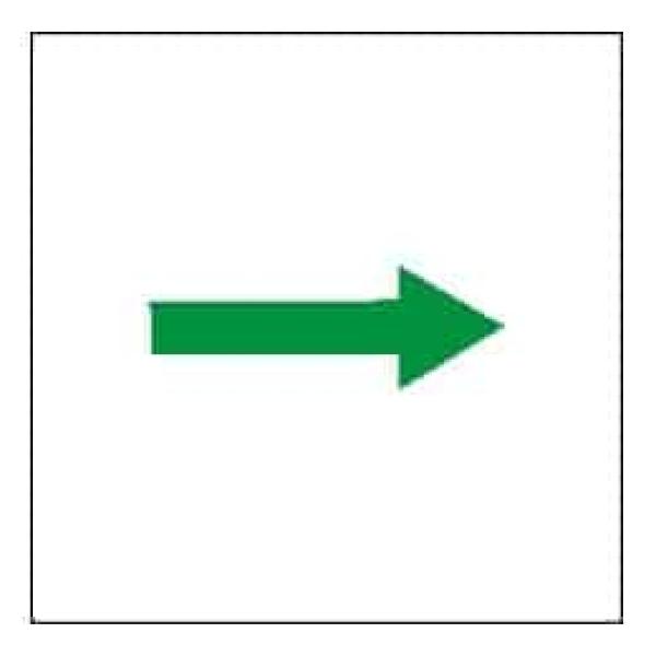 PRIMARY ESCAPE ROUTE 15X15 ETTERLYSENDE 1